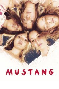 """Locandina di """"Mustang"""""""